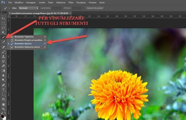 strumento-sezione-photoshop