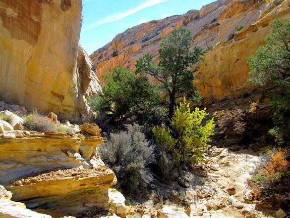 Entering a narrow spot in the canyon
