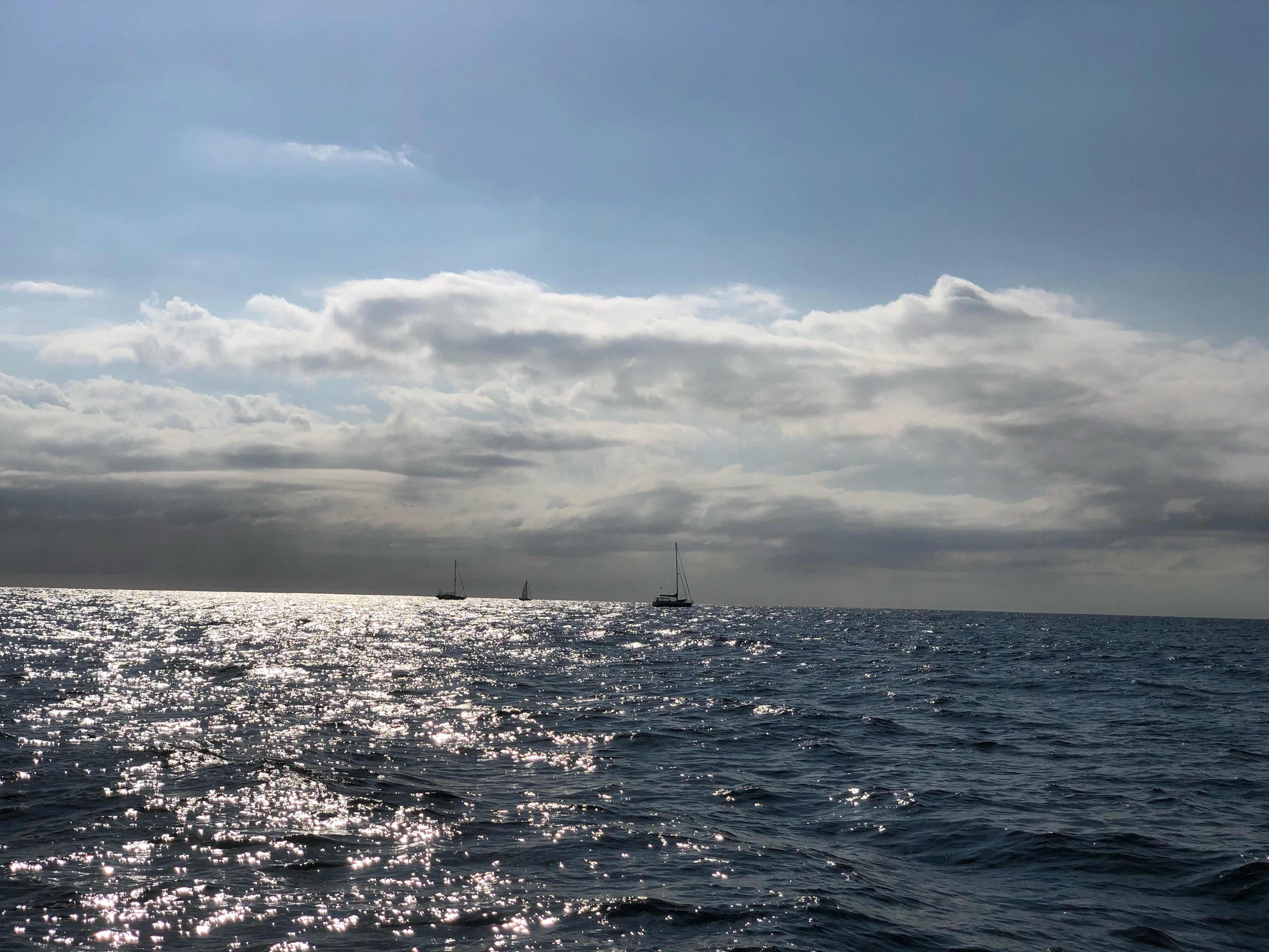 Difficile remontée : de la baie de moreton à fraser island