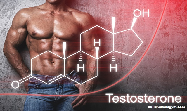 Get Your Low Testosterone Back To Normal