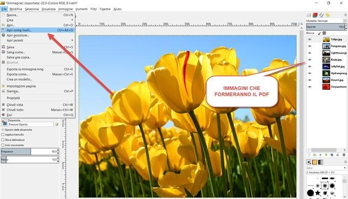 creare-pdf-gimp