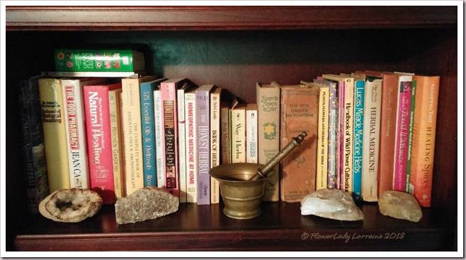 11-03-shelf3