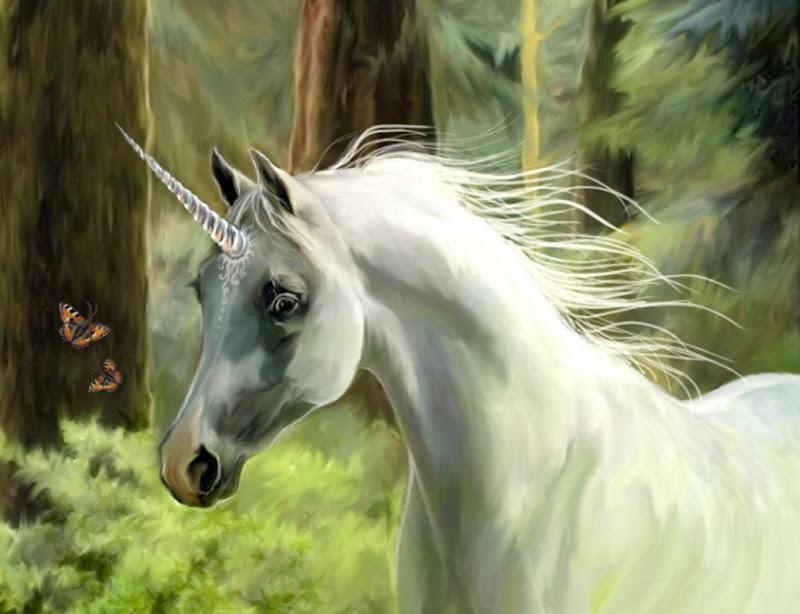 Charming Partner For You, Spirit Companion 4