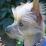 Ginny Baxter's profile photo