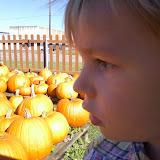 Pumpkin Patch 2014 - 1004101814.jpg