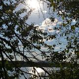 On Tour am Obersee bei Eschenbach: 21. Juli 2015 - DSC_0139.JPG