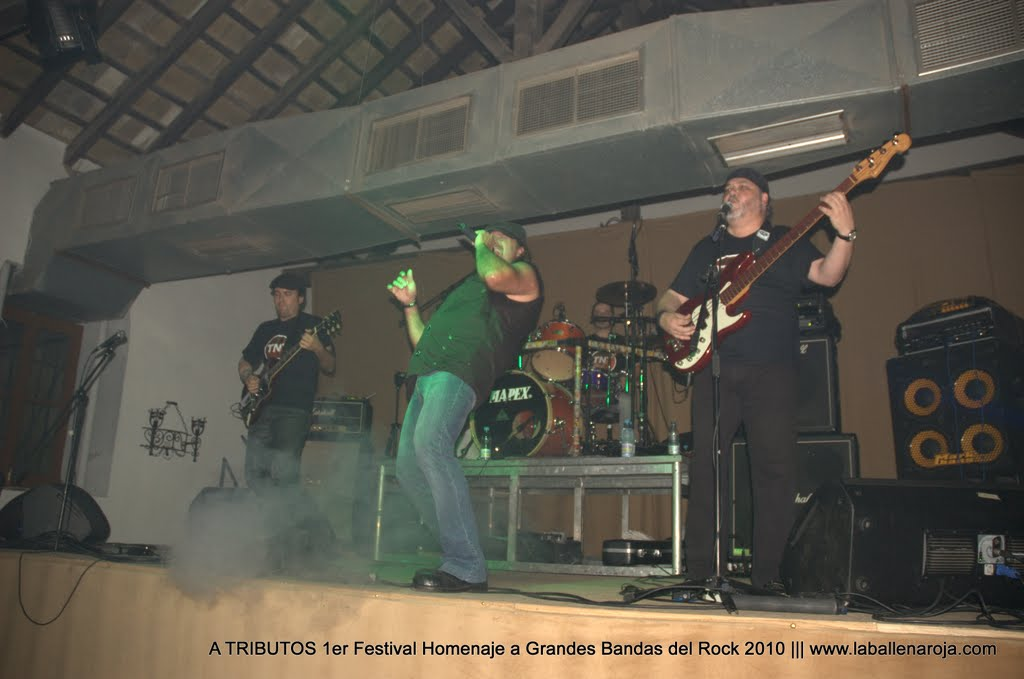 A TRIBUTOS 1er Festival Homenaje a Grandes Bandas del Rock 2010 - DSC_0198.jpg