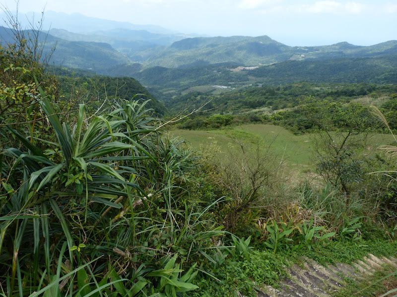 TAIWAN Daxi . Randonnée Taoyan valley - P1260050.JPG