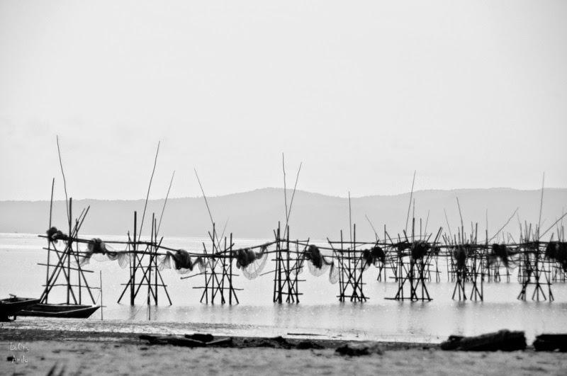 Ancient Art of Fishing