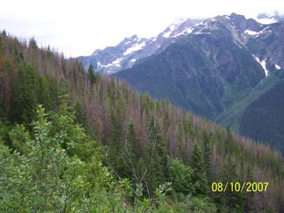 North Cascades/Jack Mt--Aug 2007 - JackScene26.jpg
