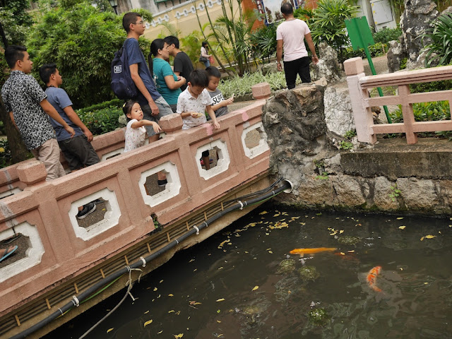 children feeding fish and turtles at Lim Ieoc Garden in Macau