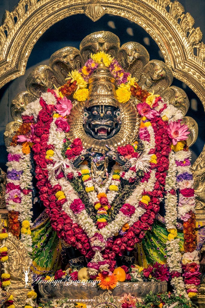 ISKCON Mayapur Deity Darshan 31 Dec 2016 (42)