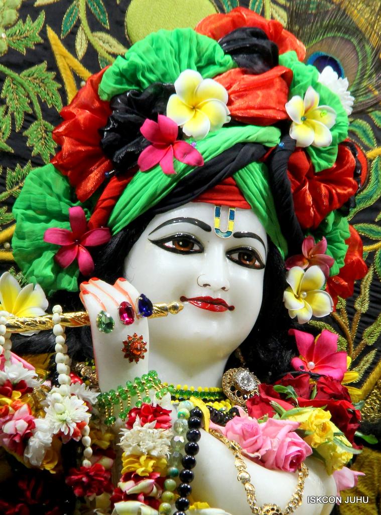 ISKCON Juhu Sringar Deity Darshan on 19th Nov 2016 (13)