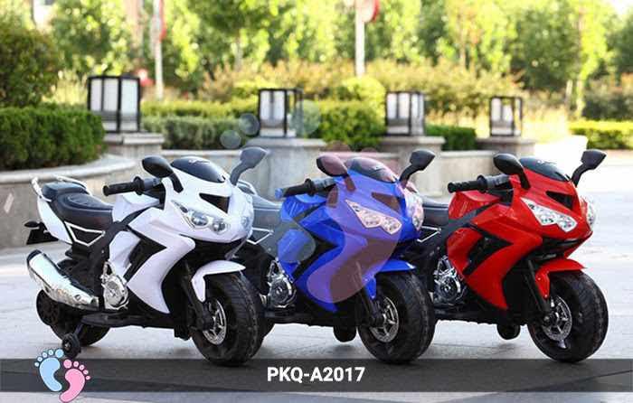 Xe môtô điện cảnh sát PKQ-A2017 1