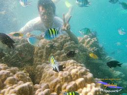 pulau harapan timur jauh 29-30 nov 2014 caklung 30