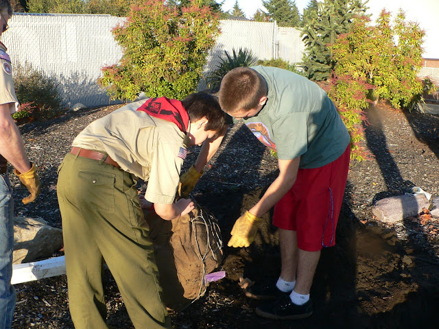 Tree Planting November 2010 - 110410%2B017.JPG