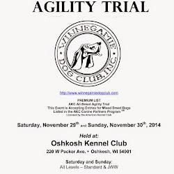 November 2014 Agility Trial
