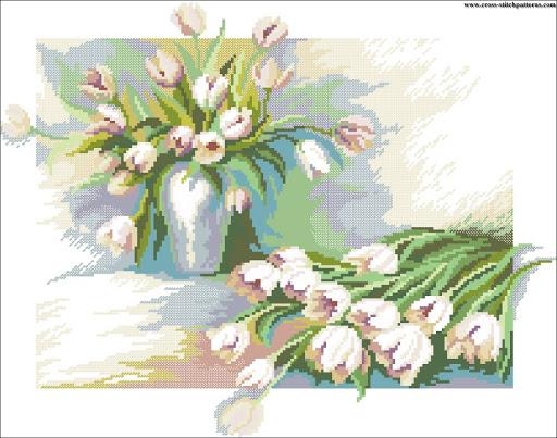 Tulips 5825 chart