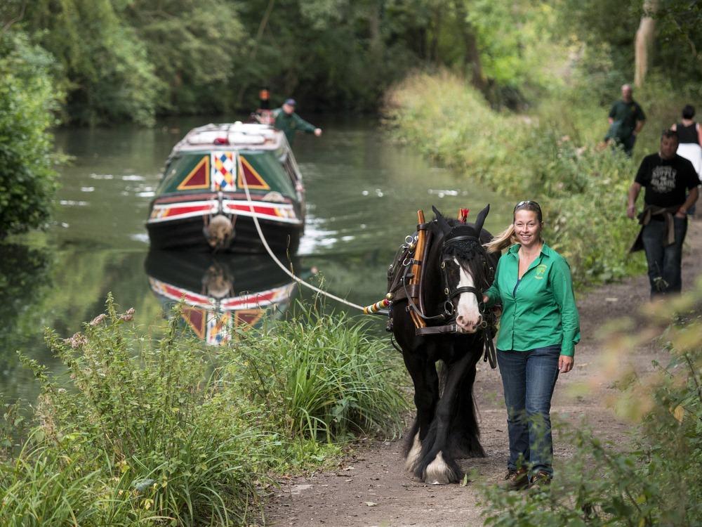 horse-drawn-boats-3