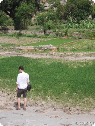 Exploring paddy fields