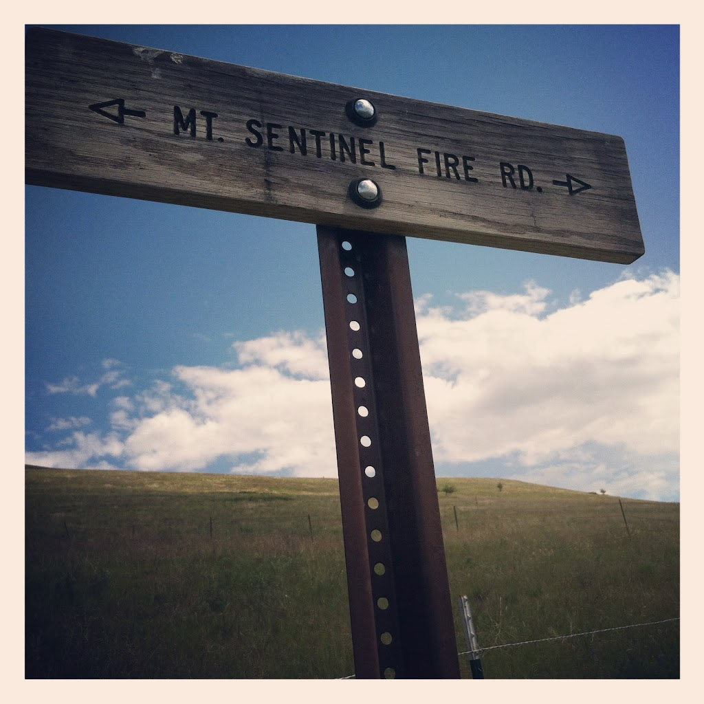 Mount Sentinel's trail indicators