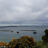 Fazenda de mariscos - Ilha de Lemuy - Chiloe, Chile