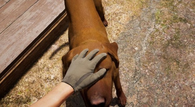 In Far Cry 5 gibt es einige wirklich brave Hunde