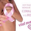 solidaridad-cancer-mama-vial-masters.jpg