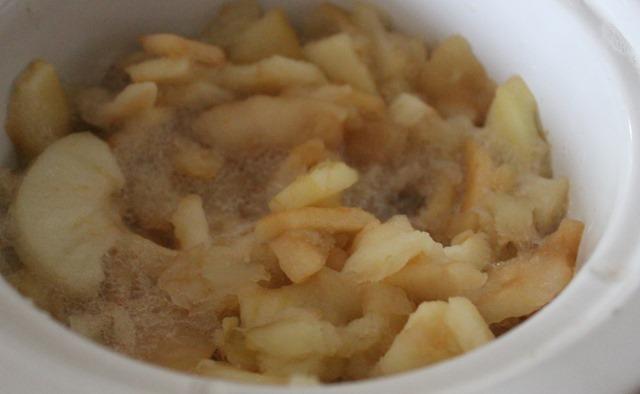 Bonnie's Best Applesauce