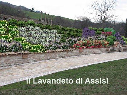 Progettare Il Giardino Gratis : Progettare piccoli giardini. fabulous piccoli giardini privati e