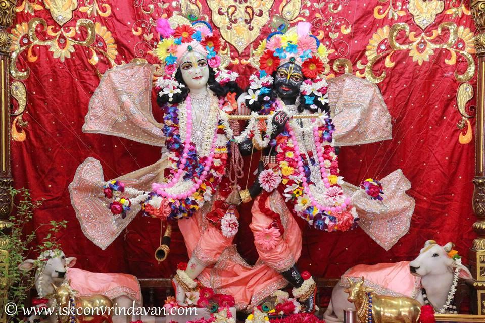 ISKCON Vrindavan Shringar Deity Darshan 2 April  2016  (9)