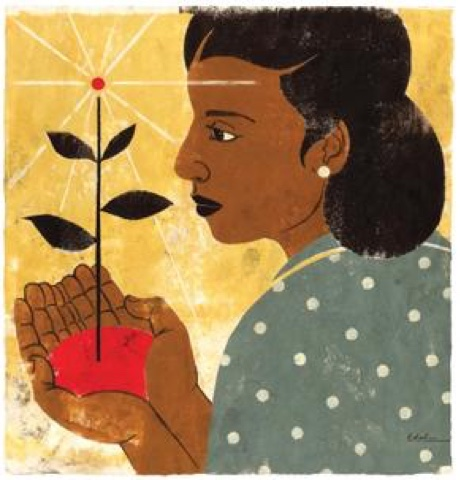the symbolism of the plant in a raisin in the sun essay The significance of mama s plant in hansberry s a raisin in the sun in a raisin in the sun, lorraine hansberry shows the audience that the black younger.