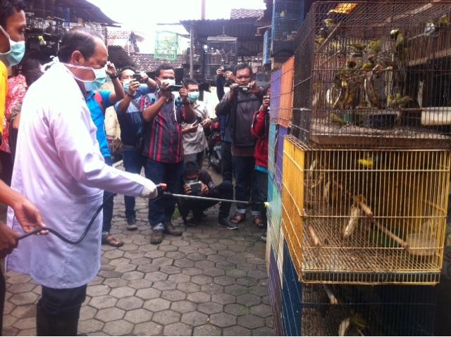 Antisipasi Flu Burung, Walikota Lakukan Penyemprotan Desinfektan di Pasar Burung Empunala