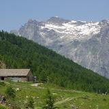 Alp da Segl, Val Fex, 2100 m (Engadine, Grisons, CH). 14 juillet 2013. Photo : J.-M. Gayman