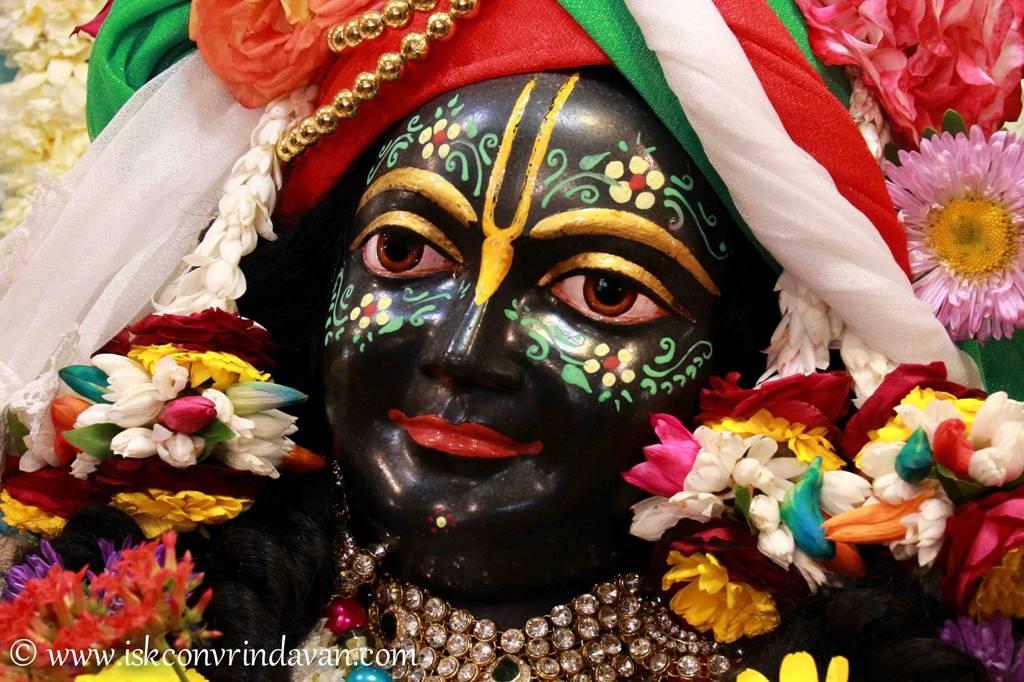 ISKCON Vrindavan Sringar Deity Darshan 28 Feb 2016 (6)
