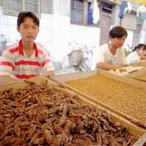 11. Street Pet Food Market in Shanghai
