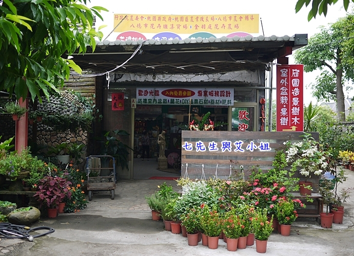 3 金羽庭花卉農場