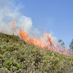 Incendi Controlat Onil-8.jpg