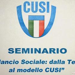 """Seminario """"Bilancio Sociale: dalla teoria al modello CUSI"""" 2-3 Ottobre 2013"""