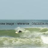 _DSC0234.thumb.jpg
