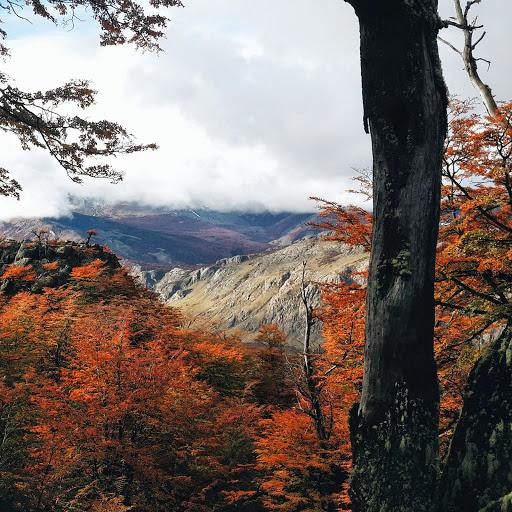 Patagonian colors. Photographer Sebastian Giannone