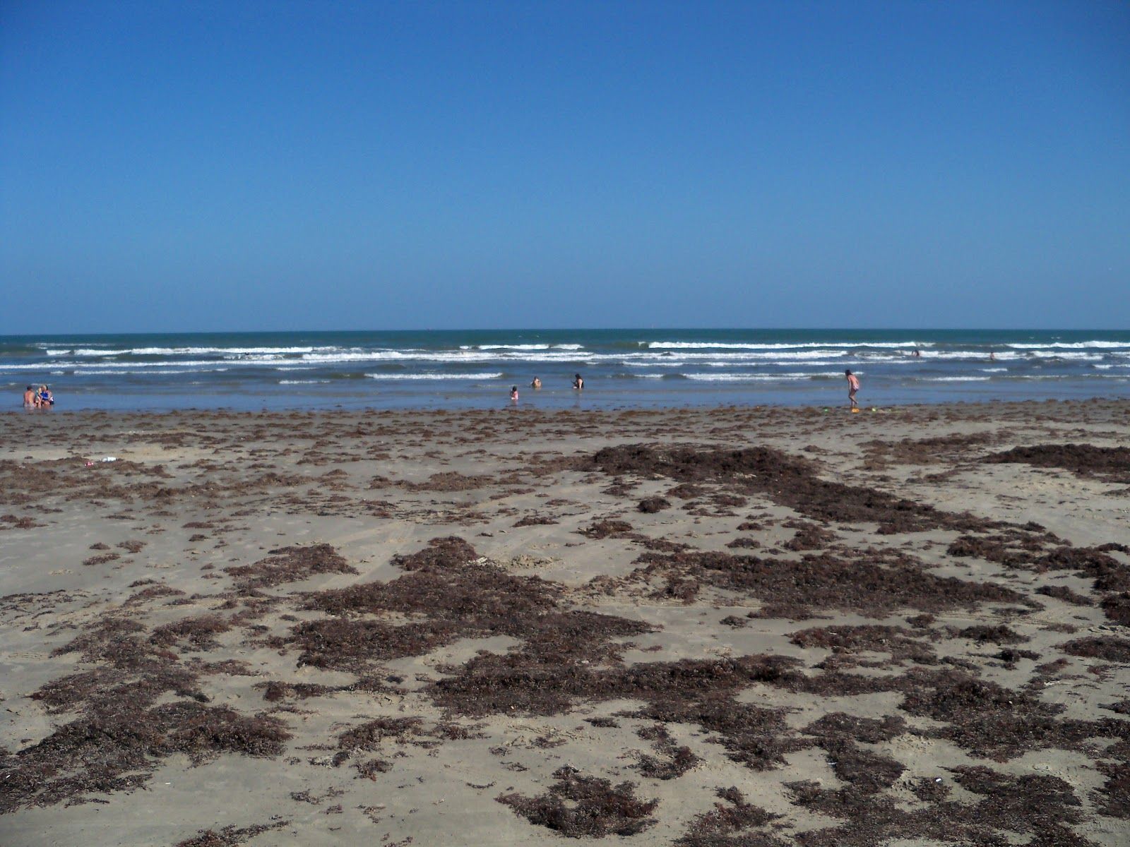 Surfside 2010 - 101_5340.JPG