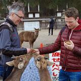 2014 Japan - Dag 8 - jordi-DSC_0404.JPG