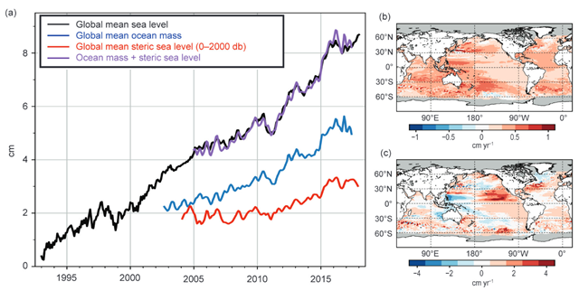 (a) Monthly averaged global mean sea level (cm; black line) observed by satellite altimeters (1993–2017)  from the NOAA Laboratory for Satellite Altimetry relative to the start of the altimeter time series in late 1992. Monthly averaged global ocean mass (blue line; 2003–Aug 2017) from GRACE. Monthly averaged global mean steric sea level (red line; 2004–17) from the Argo profiling float array. Mass plus steric (purple line). All time series have been smoothed with a 3-month filter. (b) Linear sea level trends (cm yr−1) from altimetry during 1993–2017. (c) Linear sea level trends (cm yr−1) from altimetry during 2012–17. Graphic: BAMS State of the Climate in 2017