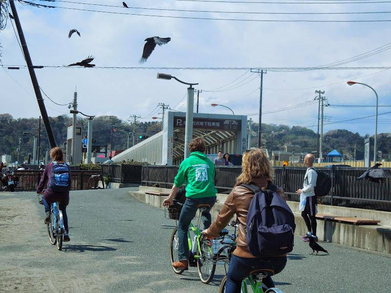 2014 Japan - Dag 7 - danique-DSCN5845.jpg