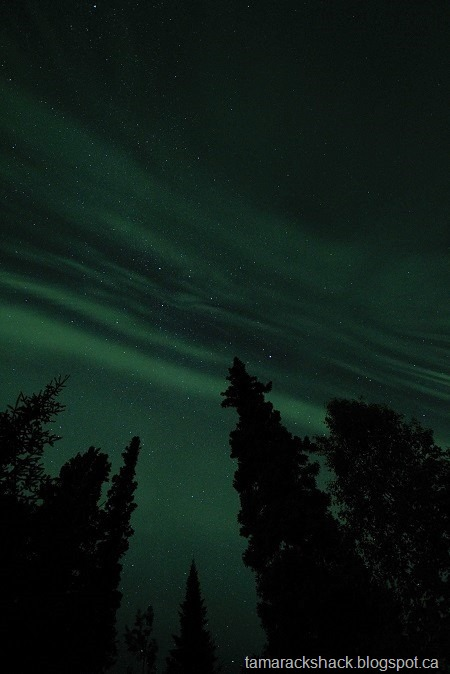 [aurora5%5B6%5D]