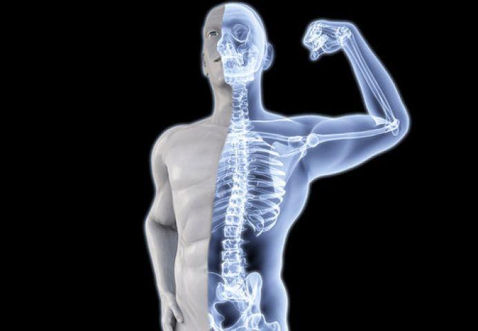 Image result for हड्डियां मजबूत बनाना