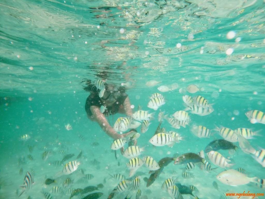 ngebolang-pulau-harapan-singletrip-nov-2013-wa-05 ngebolang-trip