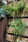 Marty and Katie's Herb Garden
