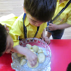 Boiled Potato Activity (Playgroup) 22-9-14
